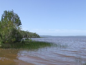 Looking across Lake Cootharaba to where I planned to paddle to in the far distance