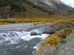 20051023_Hurunui_River_18