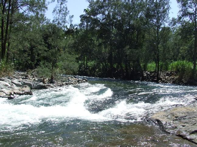 20090215_Cattle_Creek_rapid_02