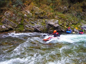 Surfing on the Upper Ashley. Photo by Steffan